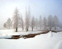 Winter Mist #1 - Yellowstone NP, Wyoming